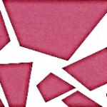 Verein Deutscher Sinti Minden eV Logo